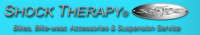 Shock Therapy Logo